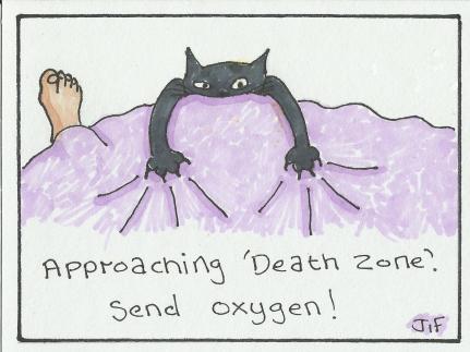 cat-crampons